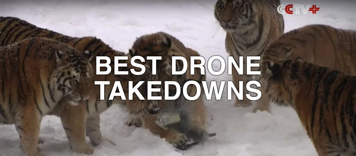 Best Drone Takedowns